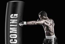 saco_de_boxeo_xiaomi_fed_martial_arts_boxing_02_ad_l